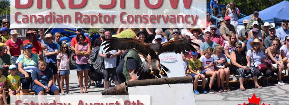 Bird Show by the Canadian Raptor Conservancy