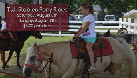 T.J. Stables Pony Rides